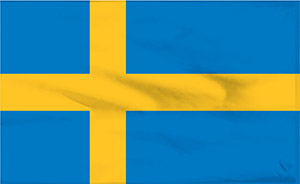 There are mainly 3 steps in an application for work permit in Sweden for a non EU-citizen. Visa to Sweden can help you with the whole process.
