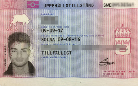 Visa to Sweden makes it easier for you to get the visa you want to Sweden and Schengen